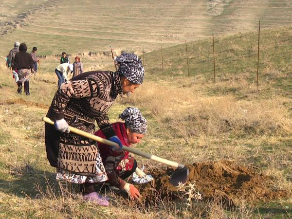 Kyrgyzstan Agriculture & Rural Development Project