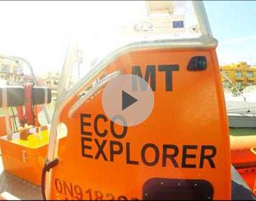 AXIS 4 FARNET - EcoExplorer, marine mammal observation in the Algarve, FLAG Barlavento