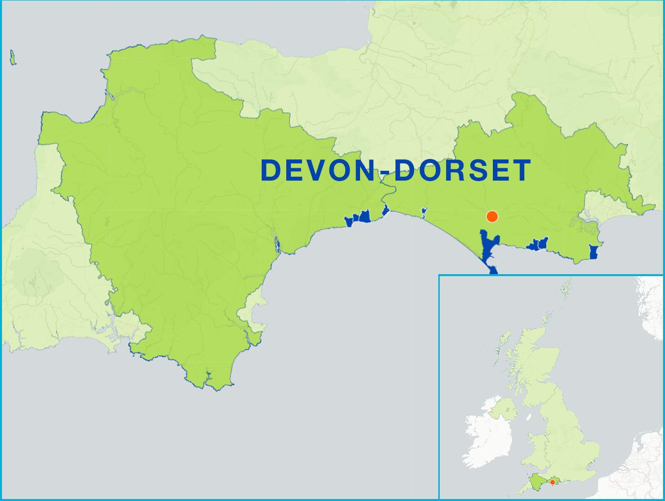 dorset and east devon flag