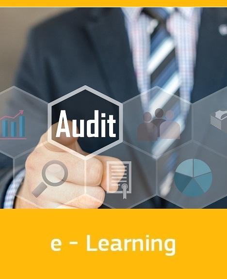 Audit Task Management and Audit Tool