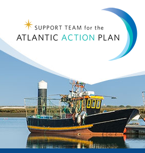 implementing action plan