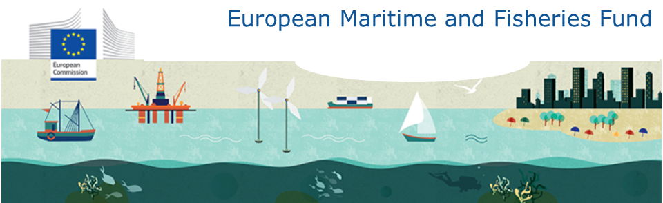Public Consultation On The Interim Evaluation Of The Direct Management Under The European Maritime And Fisheries Fund Emff Maritime Forum